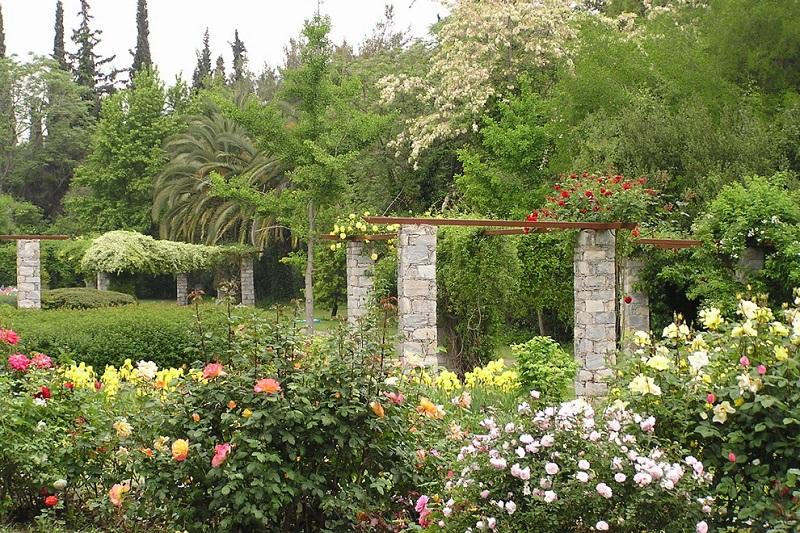 Jardim Botânico Diomidis em Atenas